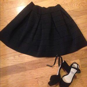 Express Flared Skirt